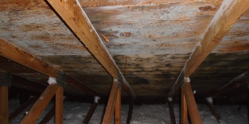 Condensation Related Leaks In Steep Roof Systems